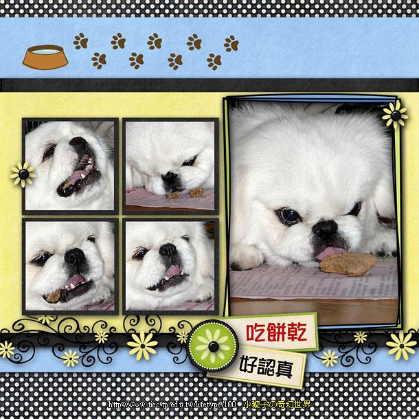 201006dog-book08.jpg